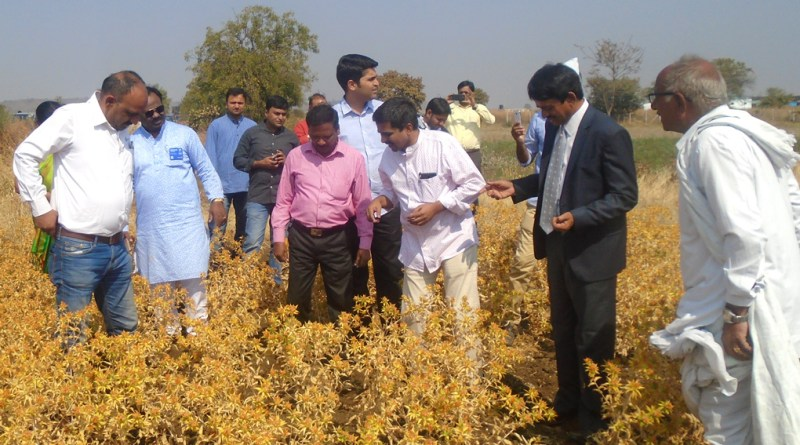 DG J Abraham (second from L) and other Rotarians examine the crops in a field.