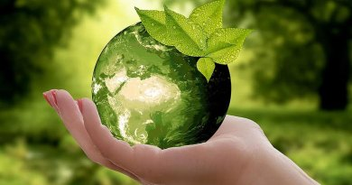 Health_nature-earth-sustainability-leaf-caution-cycle-green-ecology-globe