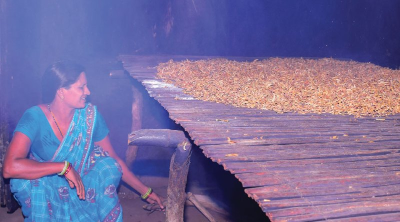 RC Kakinada helps women shrimp-makers
