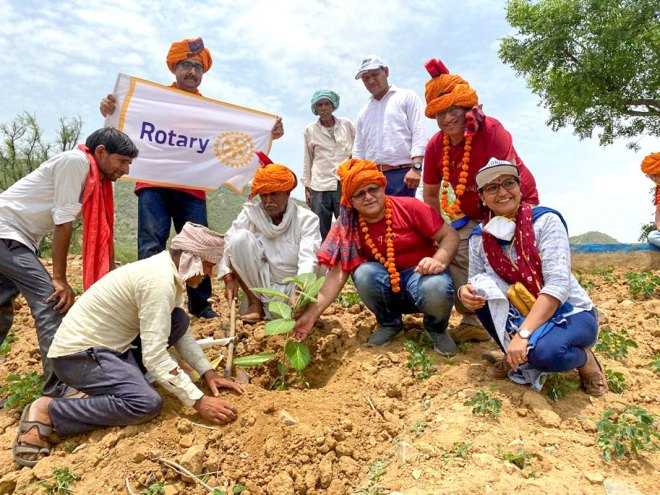 Saplings being planted at the site.