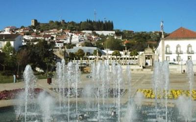 UDIPSS – Castelo Branco