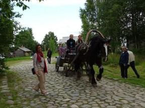 At arabası ile gezi yapabilirsiniz