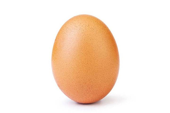 World Record Egg : la photo la plus likée sur Instagram !