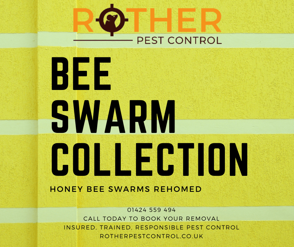 Bee Swarm Collection