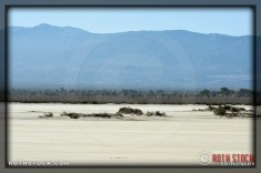 El Mirage Scenery