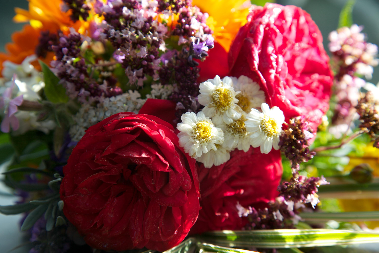 Hochzeitsblumen Im September