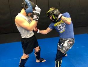 MMA strikes 02.2020