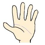 中指の下が途切れる頭脳線