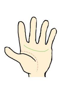 感情線(小指の下から人差し指の下)