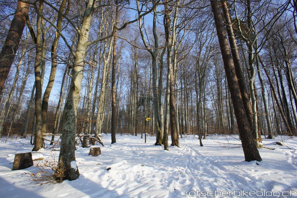 Schneebiken-Irchel-002