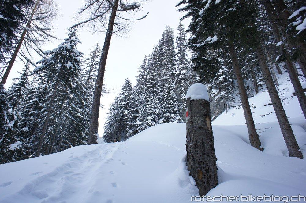 Schneeschuh-Alp-Flix-201