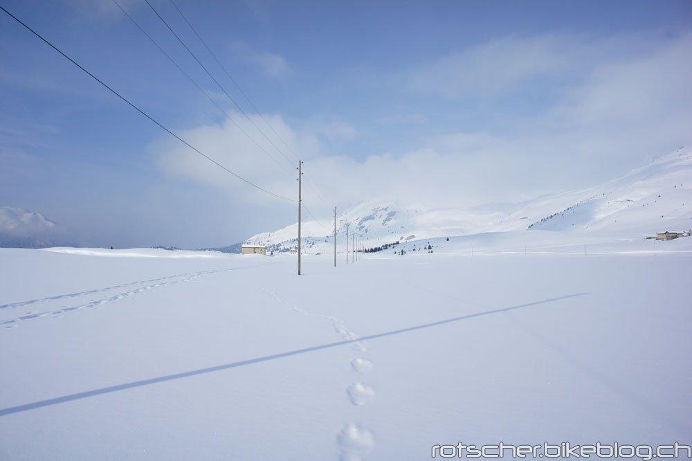 Schneeschuh-Alp-Flix-205