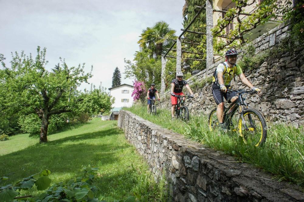 Steinmauern, Palmen und ein Trail