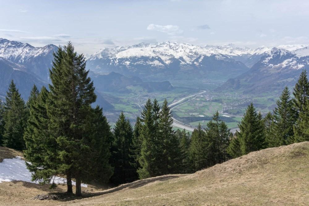 St.Galler Rheintal mit Sicht gegen Sargans
