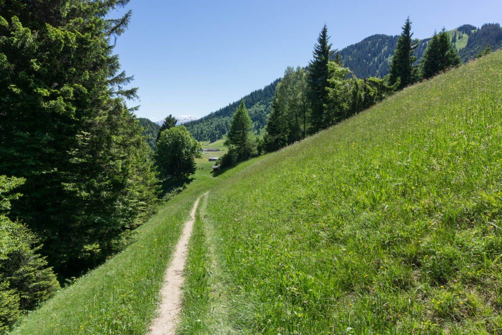 Pinselstrich-Trail