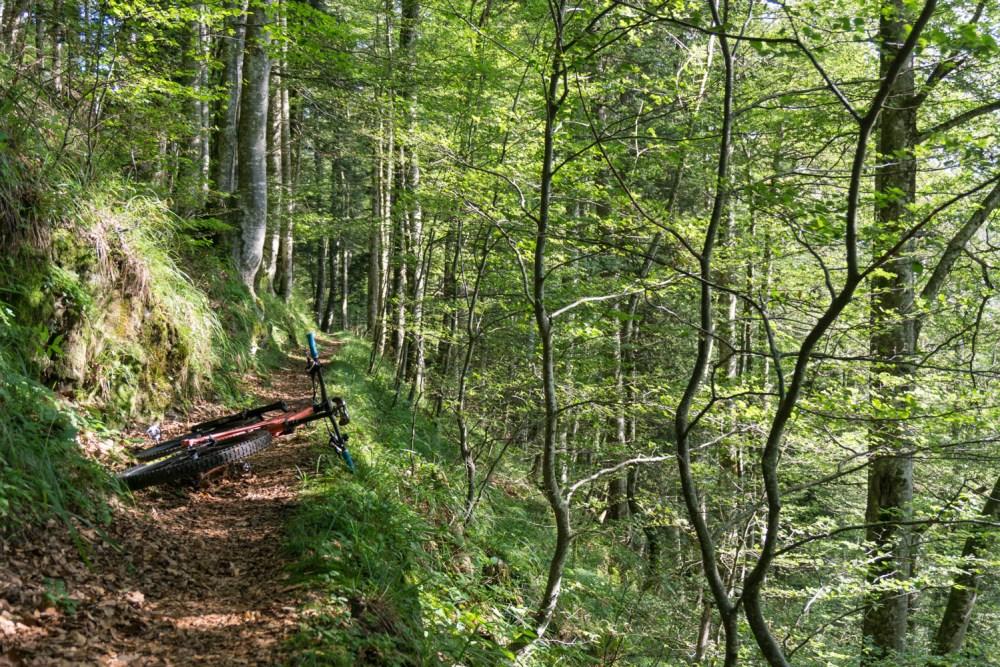 Versteckter Trail