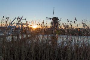 Kinderdijk, Molen, Brug, Zonsondergang, Rotterdam, Alblasserdam, molens, riet, nederland, holland