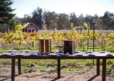 Outdoor wedding reception table setting with the vineyard in the background