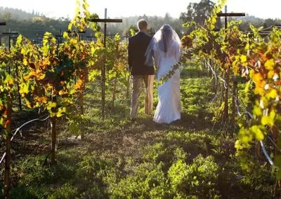 Intimate wedding setting for photos in the vineyard
