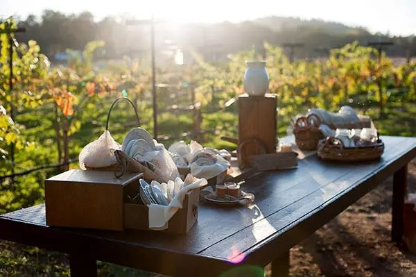 Tableware for a rustic wedding at the Rough & Ready Vineyards. Photo by Patti Mustain, Woman of Faith Photography