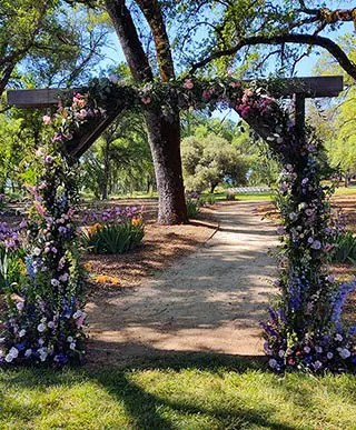 Floral arch created by Strelitzia Flowers