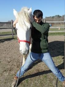 Corentin Bourreau osthéopathe masseur stretcheur équin