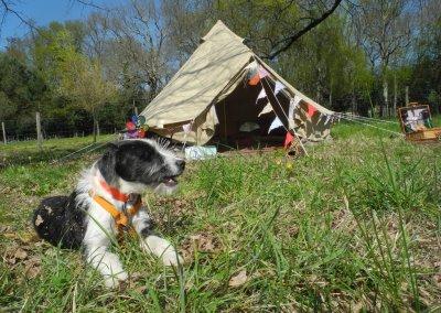 La tente Belle Tente de 4m de diamètre