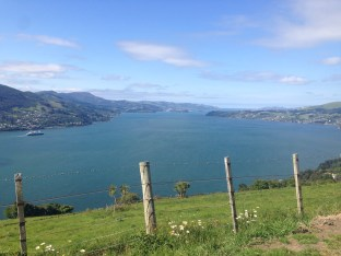 Heading out along the Otago peninsula, outside of Dunedin