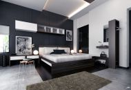 Amazing black and white furniture ideas 02