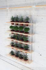 Amazing indoor wall herb garden ideas (1)