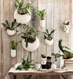 Amazing indoor wall herb garden ideas (11)