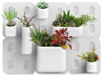 Amazing indoor wall herb garden ideas (12)