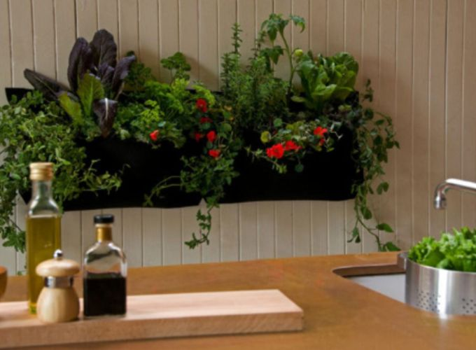 Amazing indoor wall herb garden ideas (19)