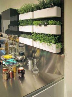 Amazing indoor wall herb garden ideas (7)