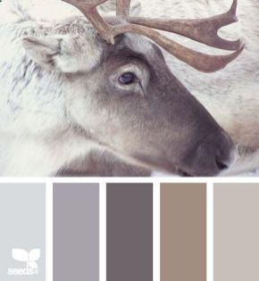 Beautiful bedroom design ideas using grey carpet 042