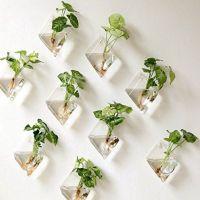Incredible indoor hanging herb garden (16)