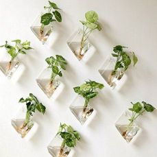 Incredible indoor hanging herb garden (16)