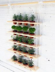 Incredible indoor hanging herb garden (3)