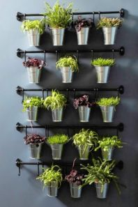 Incredible indoor hanging herb garden (7)