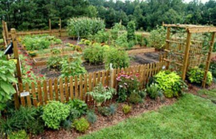 Stunning vegetable garden fence ideas (1)