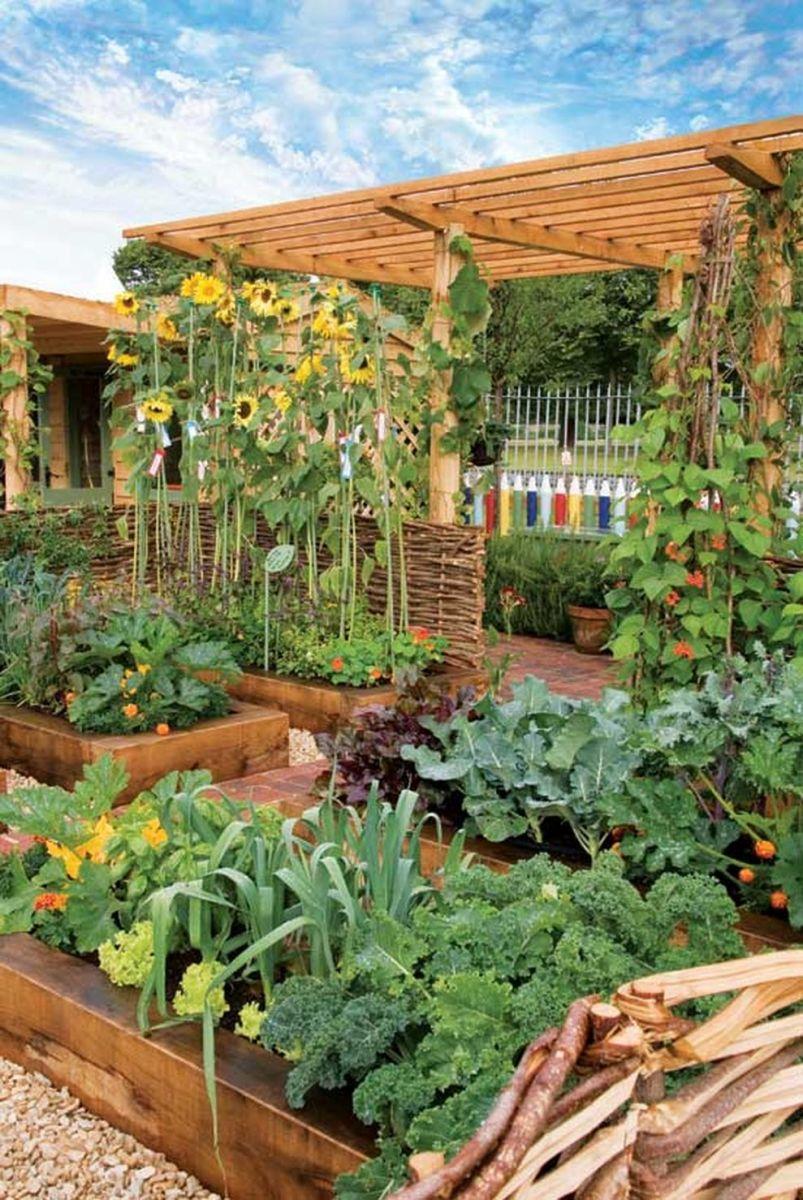Affordable backyard vegetable garden designs ideas 05