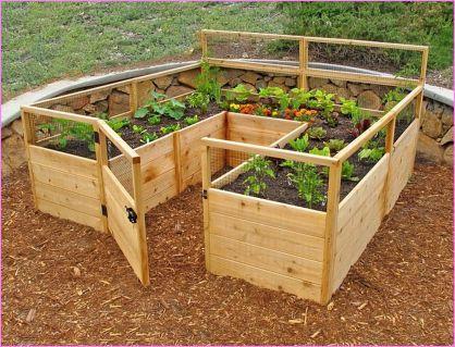 Affordable backyard vegetable garden designs ideas 10