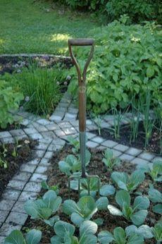 Affordable backyard vegetable garden designs ideas 24