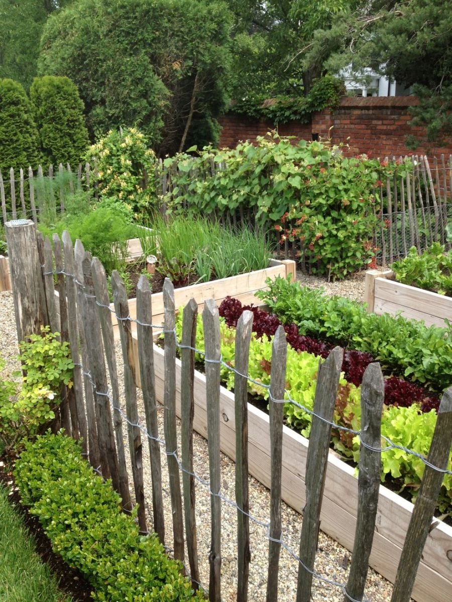 Affordable backyard vegetable garden designs ideas 44