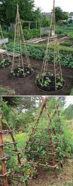 Affordable backyard vegetable garden designs ideas 51