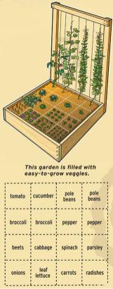 Affordable backyard vegetable garden designs ideas 54