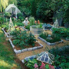 Affordable backyard vegetable garden designs ideas 55