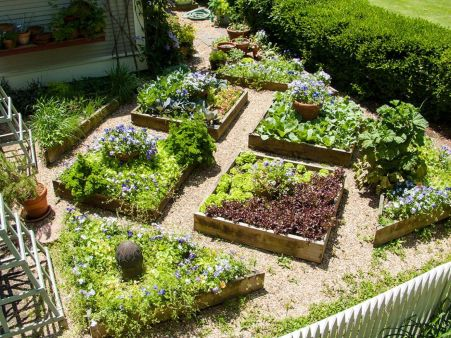 Affordable backyard vegetable garden designs ideas 56