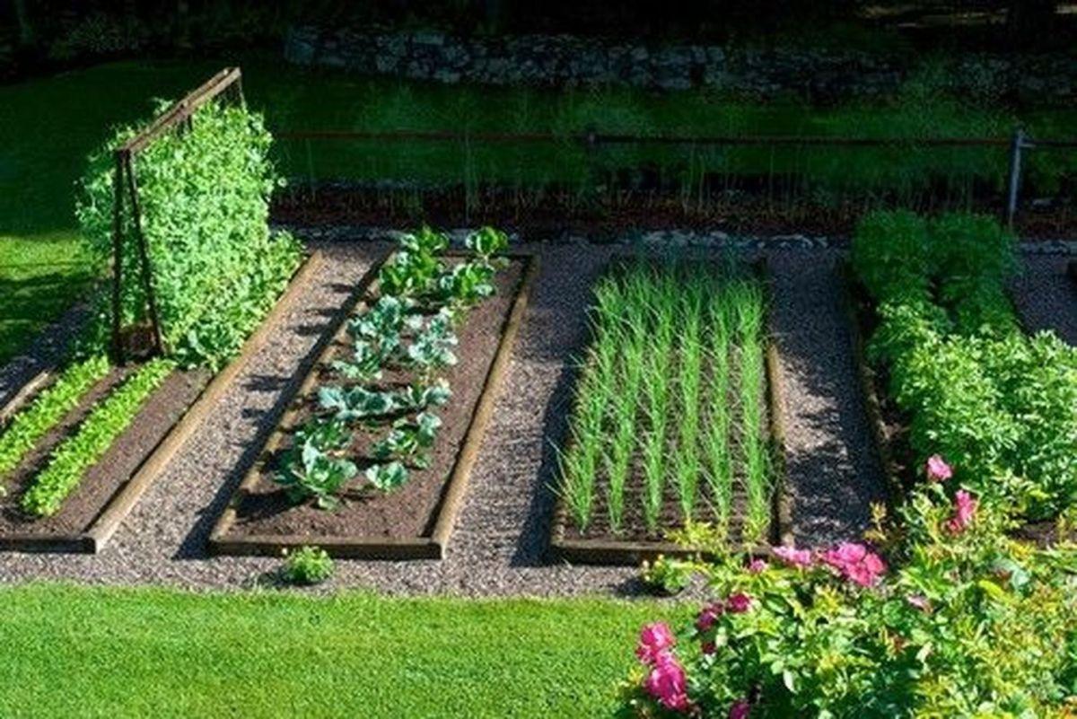 Affordable backyard vegetable garden designs ideas 61 - Affordable Backyard Vegetable Garden Designs Ideas 61 - Round Decor