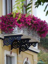 Amazing small balcony garden design ideas 30